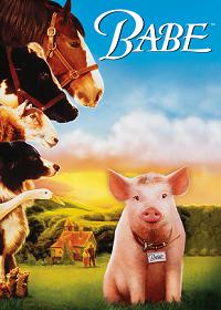 Babe (1995) เบ๊บ หมูน้อยหัวใจเทวดา ภาค1