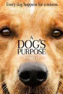 A Dog's Purpose (2017) หมา เป้าหมาย และเด็กชายของผม